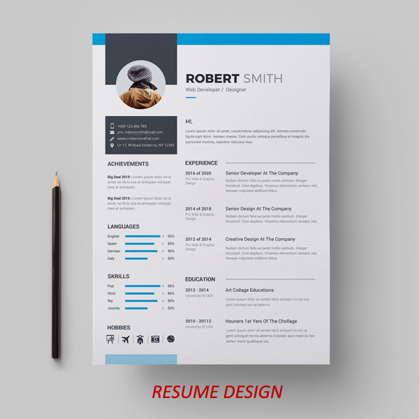 i-will-create-a-beautiful-and-professional-resume-with-infographics-&-icons